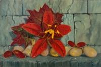 Floare de ambrozia